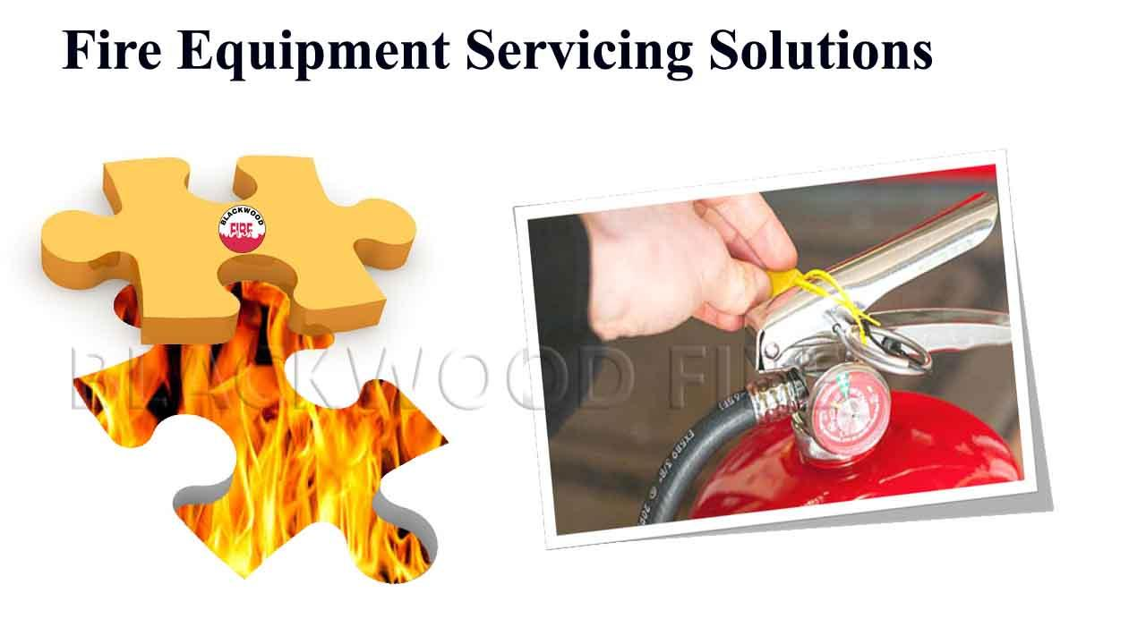 Engineer Carrying Out Fire Extinguisher and Fire Equipment Servicing